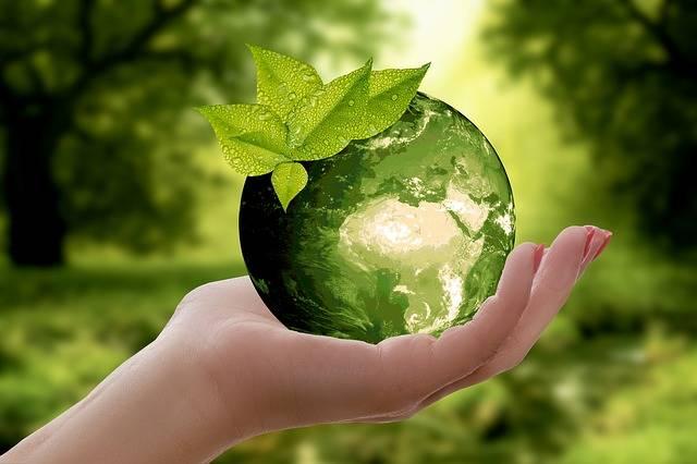 Nature Earth Sustainability - Free photo on Pixabay (546894)