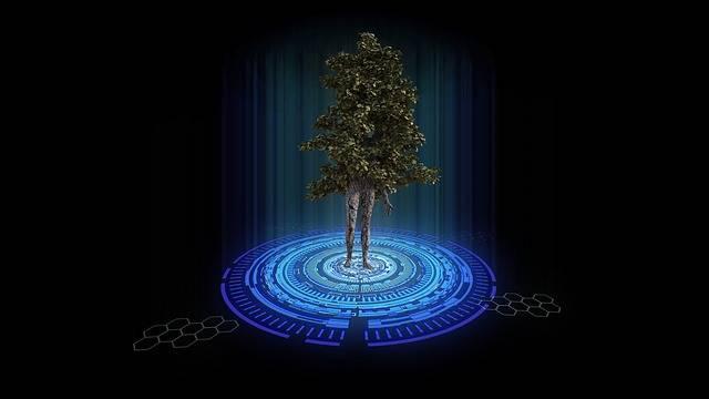 Teleportation Tree Nature - Free image on Pixabay (547311)