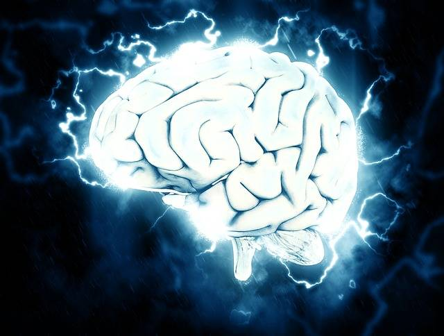 Brain Electrical Knowledge - Free image on Pixabay (550853)