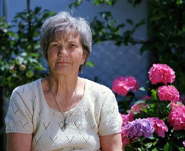 Granny Elder Flower - Free photo on Pixabay (551770)
