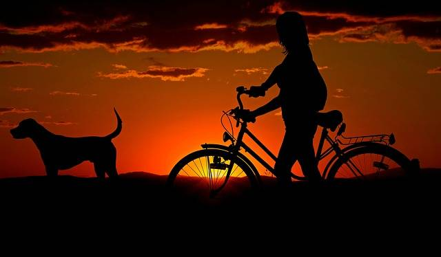 Woman Girl Bike - Free photo on Pixabay (555527)