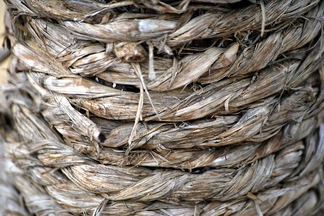 Rope Twine Hemp - Free photo on Pixabay (558597)