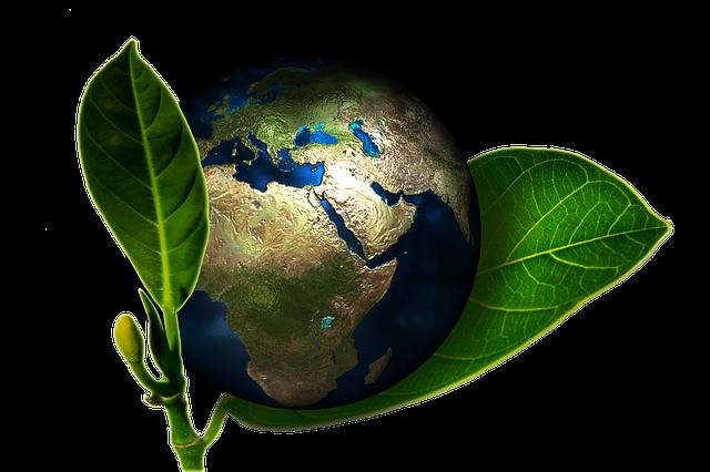 Earth Globe Birth - Free image on Pixabay (559656)