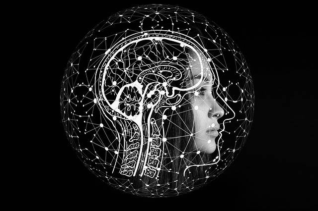 Artificial Intelligence Brain - Free image on Pixabay (569936)