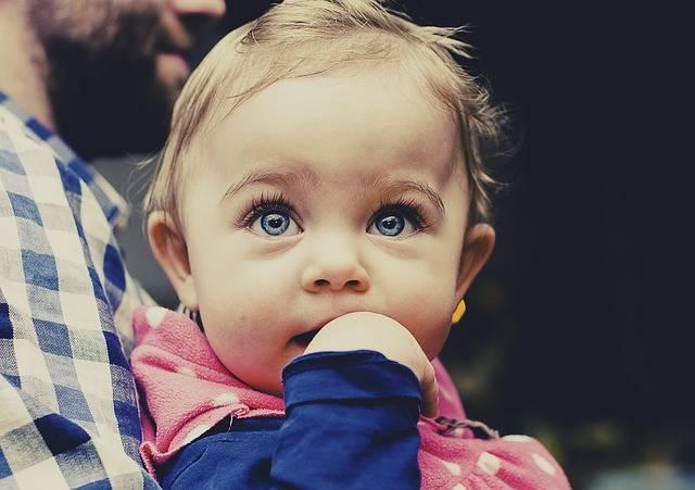 Baby Child Toddler - Free photo on Pixabay (572669)