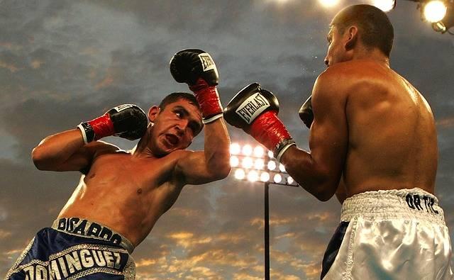Box Boxing Match Uppercut Ricardo - Free photo on Pixabay (573056)