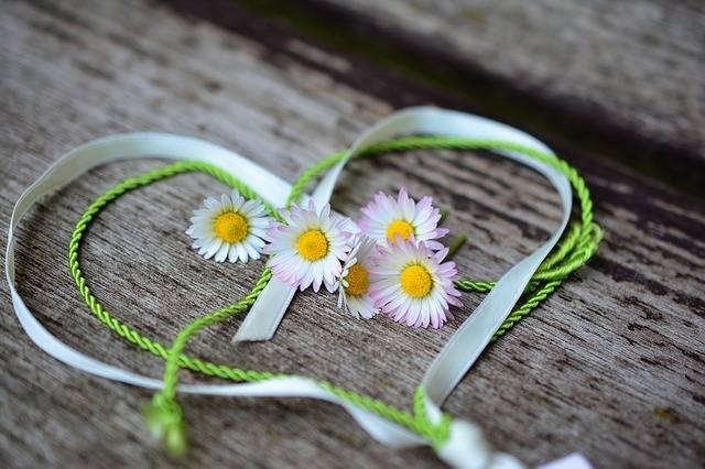 Daisy Heart Romance Valentine'S - Free photo on Pixabay (576497)