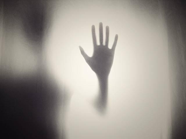 Hand Silhouette Shape - Free photo on Pixabay (576550)