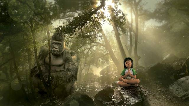 Fantasy Forest Gorilla - Free photo on Pixabay (576658)