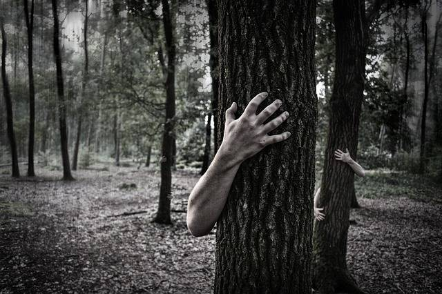 Hands Trunk Creepy - Free photo on Pixabay (577384)