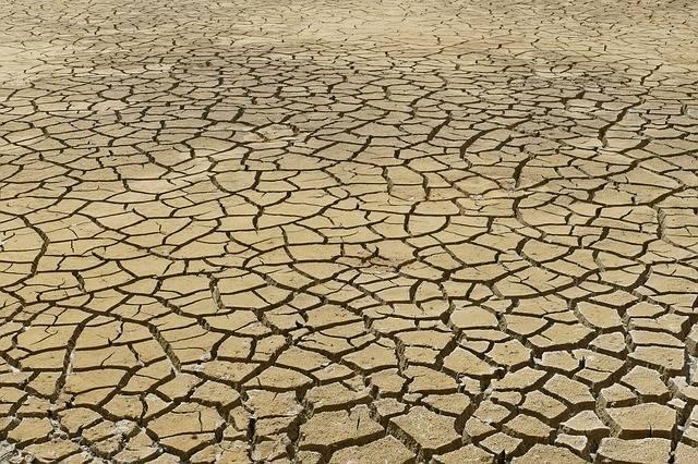 Dry Dehydration Drought - Free photo on Pixabay (578750)