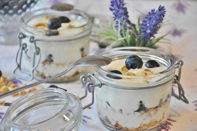 Yogurt Berries Blueberries - Free photo on Pixabay (579640)