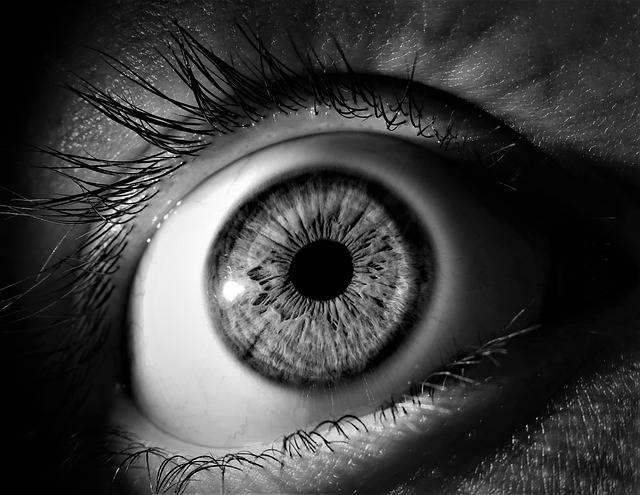 Eye Iris Pupil - Free photo on Pixabay (580137)