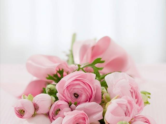 Roses Bouquet Congratulations - Free photo on Pixabay (580813)