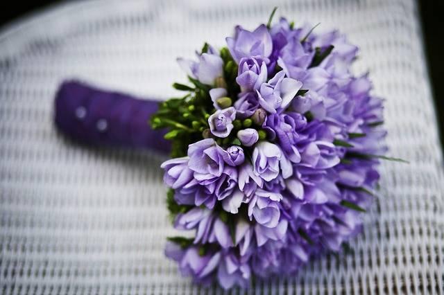 Marriage Flower Purple Flowers - Free photo on Pixabay (581450)