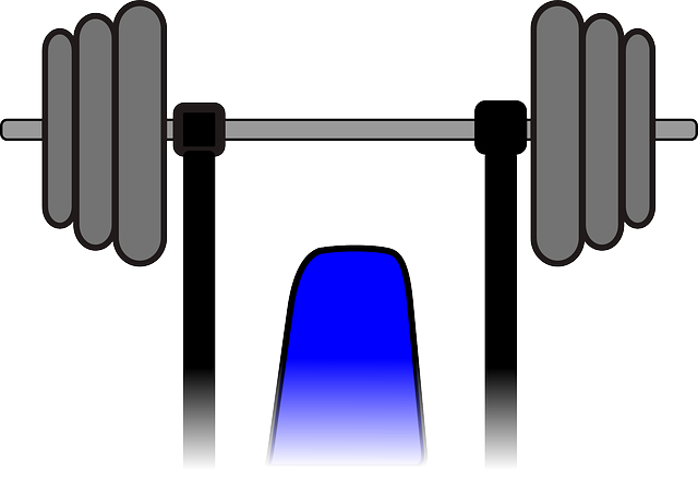 Weights Exercise Bodybuilding - Free vector graphic on Pixabay (582025)