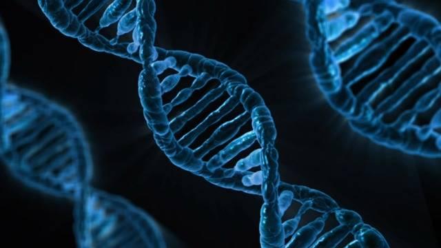 Dna Biology Medicine - Free image on Pixabay (583887)