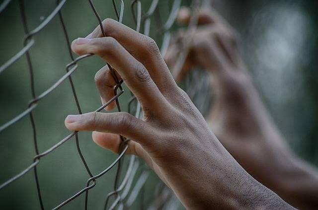Fence Freedom Prison - Free photo on Pixabay (583915)