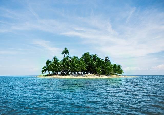 Island Vacations Caribbean Palm - Free photo on Pixabay (588278)