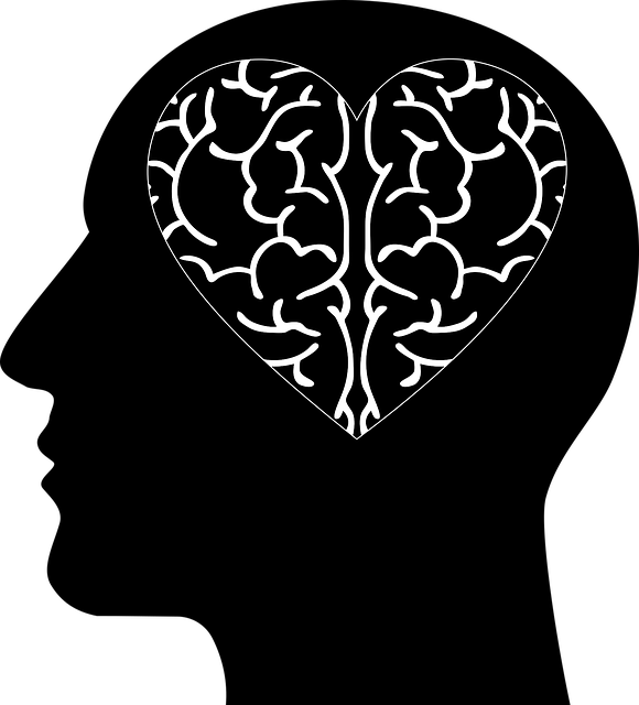 Cranium Head Abstract - Free vector graphic on Pixabay (590860)