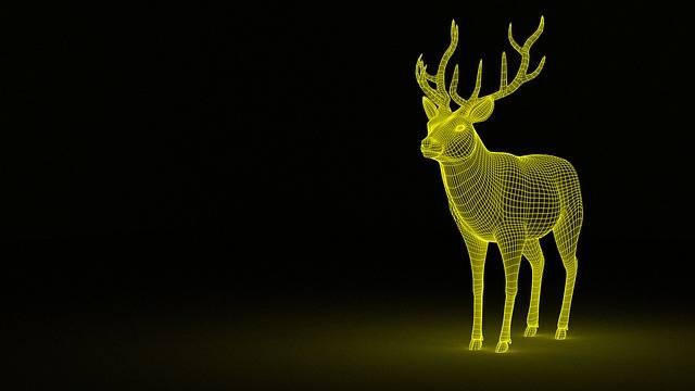 Deer Dream Animal - Free image on Pixabay (592562)