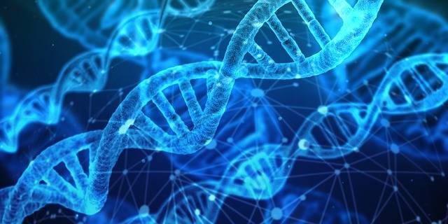 Dna Genetic Material Helix - Free image on Pixabay (593350)