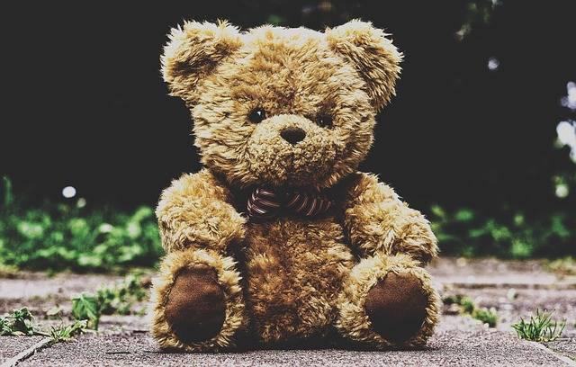 Teddy Bear Stuffed Animal - Free photo on Pixabay (595472)