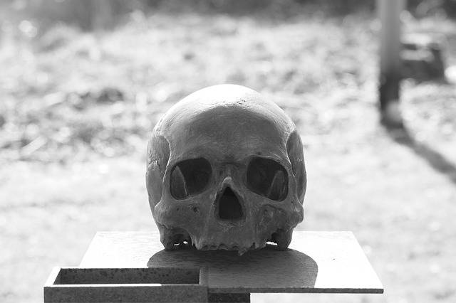 Skull Head And Crossbones - Free photo on Pixabay (596031)