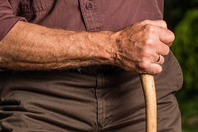 Hand Walking Stick Arm - Free photo on Pixabay (598433)