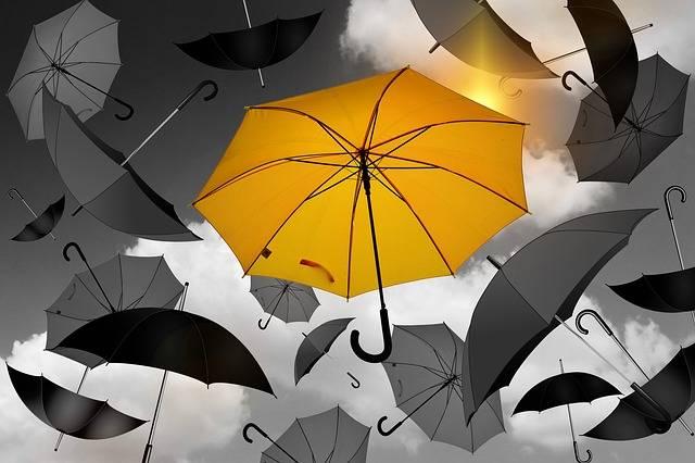 Umbrella Yellow Black - Free photo on Pixabay (600378)