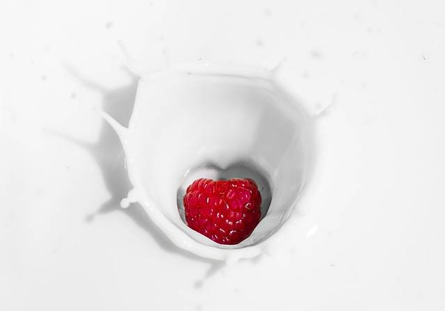 Raspberry Yogurt Milk - Free photo on Pixabay (600525)