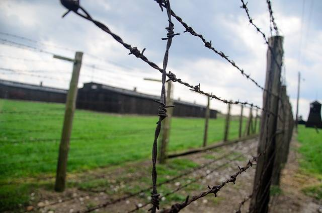 Fence Holocaust Barbwire - Free photo on Pixabay (613252)