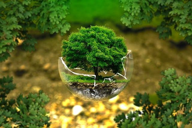 Environmental Protection Nature - Free photo on Pixabay (614828)