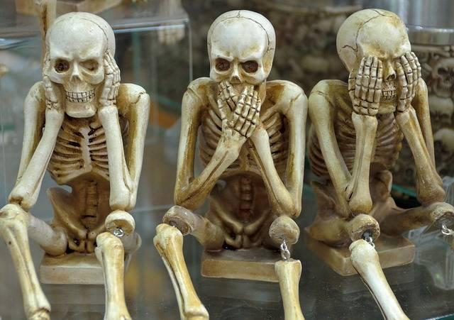 Skeletons Funny Hear No Evil Speak - Free photo on Pixabay (619427)