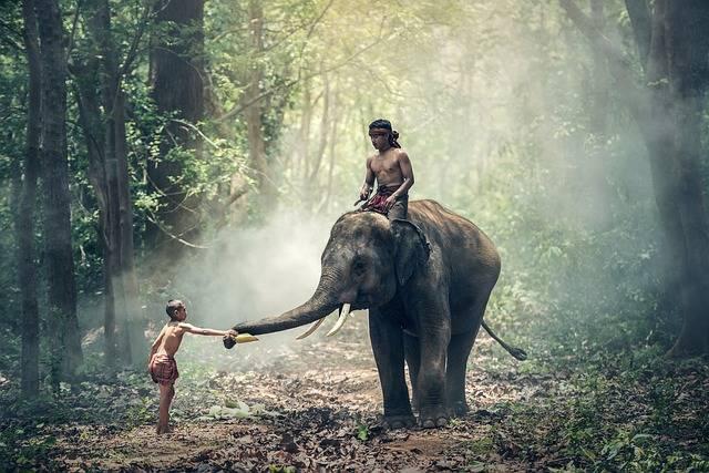 Elephant Riding Children - Free photo on Pixabay (623689)