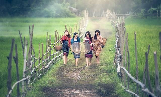 Girl Countryside Path Working - Free photo on Pixabay (623704)