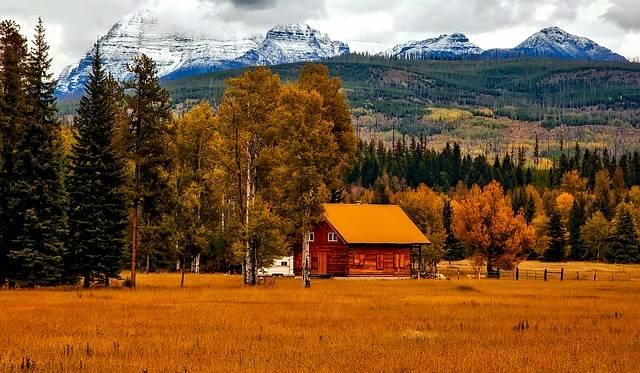 Autumn Fall Foliage - Free photo on Pixabay (627474)