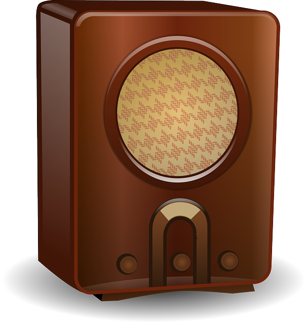 Amplifier Speaker Electro-Acoustic - Free vector graphic on Pixabay (629315)