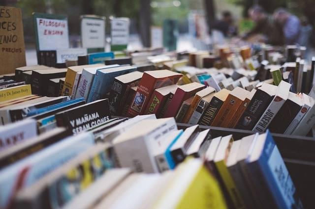 Arranged Books Bookshop - Free photo on Pixabay (631759)