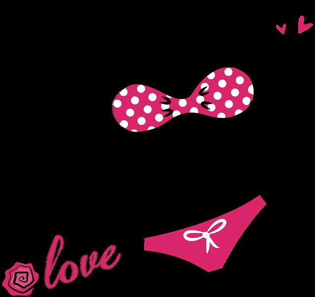 Bikini Lingerie Underwear - Free vector graphic on Pixabay (632972)