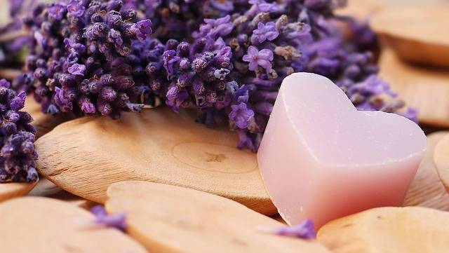 Lavender Heart Wood Soap - Free photo on Pixabay (635176)