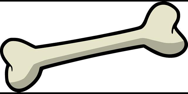 Bone Dog - Free vector graphic on Pixabay (639273)