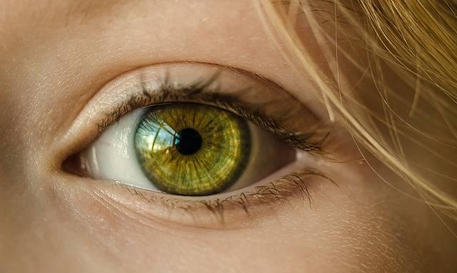 Eye Iris Look - Free photo on Pixabay (641158)