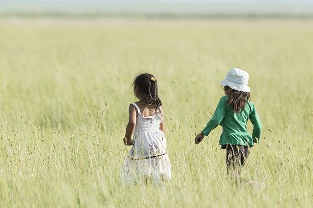 Two Girls Good Friends Meadow A - Free photo on Pixabay (641908)