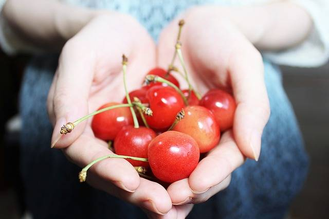 And Cherries Red Fruit - Free photo on Pixabay (641969)