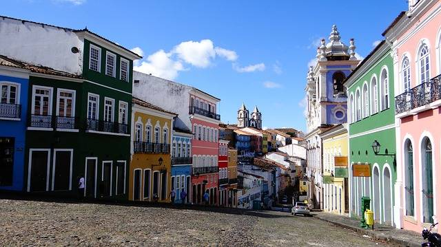 El Salvador Brazil Brazilwood - Free photo on Pixabay (643362)