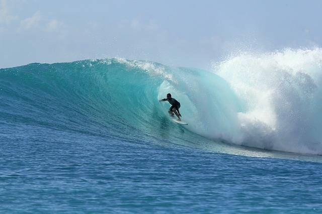 Surfing Waves Paradise - Free photo on Pixabay (646783)