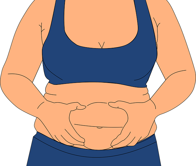 Obesity Fatness Love Handles - Free vector graphic on Pixabay (656286)