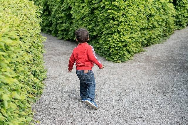 Child Crossroad Kid - Free photo on Pixabay (662908)