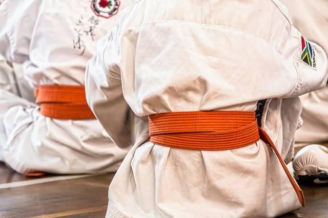 Karate Martial Arts Sport - Free photo on Pixabay (666057)